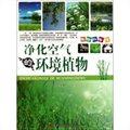 净化空气的环境植物