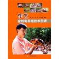 李艺金钱龟养殖技术图谱