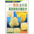图说金针菇高效栽培关键技术