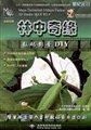林中奇缘:数码影音DIY
