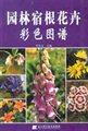 园林宿根花卉彩色图谱
