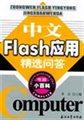 中文Flash应用精选问答