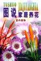图说家居养花(室内植物)