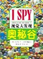 I SPY视觉大发现:奥秘谷
