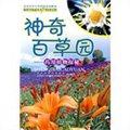 神奇百草园:药用植物探秘