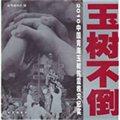 玉樹不倒:2010中國青海玉樹抗震救災紀實