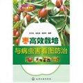 枣高效栽培与病虫害看图防治