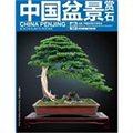 中国盆景赏石(2012-5)