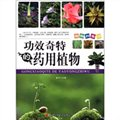 植物科普馆:功效奇特的药用植物