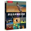 中国国家地理:野生鸟类摄影手册