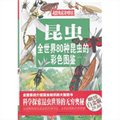 昆虫:全世界80种昆虫的彩色图鉴(彩图精装)
