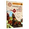 爭奇斗艷的世界非物質文化遺產:新疆維吾爾木卡姆藝術、福建南音、貴州侗族大歌、朝鮮族農樂舞(彩圖版)