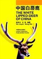 中国白唇鹿