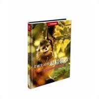 美丽生灵的最后乐章:濒临消失的野生动物