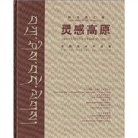中国美术作品集:灵感高原